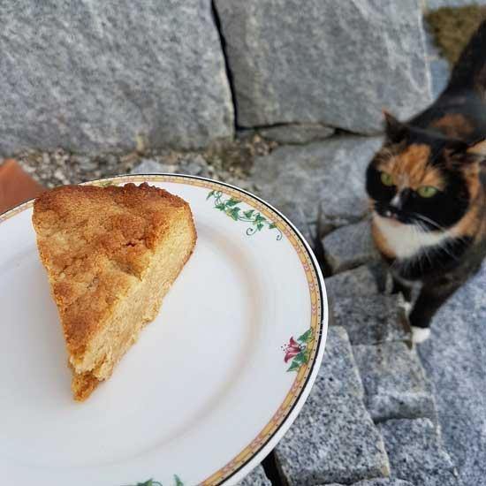 Peanut Butter Cookie Kuchen mit Mucki allias Grizzcat